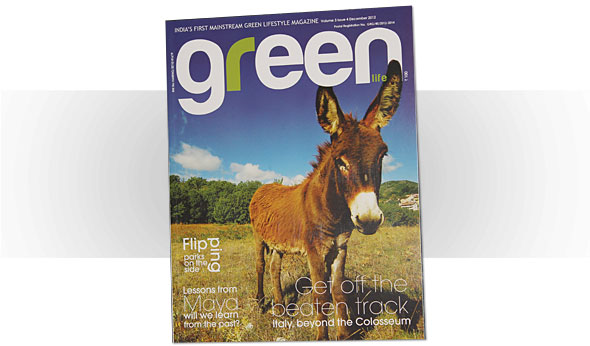 Green life magazine - click to go to Facebook page