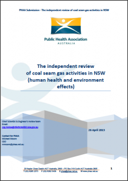 PublicHealthAss_CSGreport2013cover