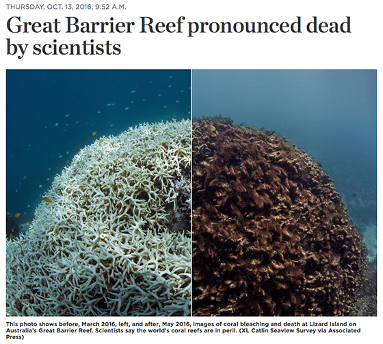 Great Barrier Reef Dead >> No more bad investments – Centre for Climate Safety
