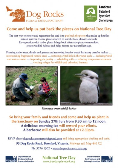 national_tree_day_flyer