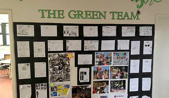 Green Teams wall